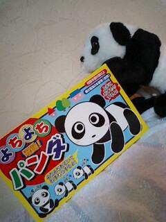 よちよちパンダ